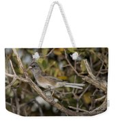 Dark-eyed Junco Weekender Tote Bag
