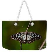Dark Glassy Tiger Butterfly On Branch Weekender Tote Bag