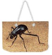 Darkling Beetle Bends Down To Drink Dew Weekender Tote Bag