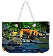 Darn Fishies Weekender Tote Bag