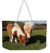 Dartmoor Ponies  Weekender Tote Bag