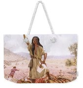 David And Goliath Weekender Tote Bag by William Brassey Hole