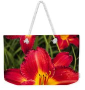 Day Lilies Weekender Tote Bag by Adam Romanowicz