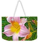 Day Lily Near Ottawa-ontario  Weekender Tote Bag