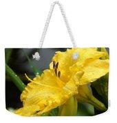 Daylilies Abound Weekender Tote Bag