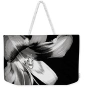 Daylily In Gray Weekender Tote Bag