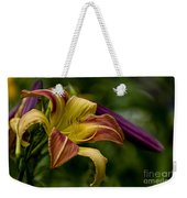 Daylily Picture 452 Weekender Tote Bag