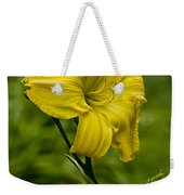 Daylily Picture 469 Weekender Tote Bag