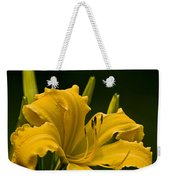 Daylily Picture 539 Weekender Tote Bag