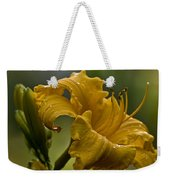 Daylily Picture 558 Weekender Tote Bag