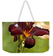 Daylily Pictures 576 Weekender Tote Bag