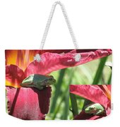 Daylily Shade For A Tree Frog Weekender Tote Bag