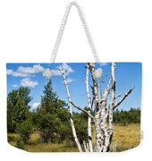 Dead Birch Trees Weekender Tote Bag