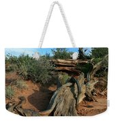 Dead Horse Point Tree 1 Weekender Tote Bag