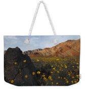Death Valley Spring 1 Weekender Tote Bag