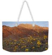 Death Valley Spring 2 Weekender Tote Bag