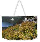 Deciduous Beech Or Fagus In Colour Weekender Tote Bag