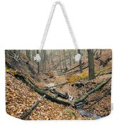 Deciduous Forest With Ravines Weekender Tote Bag