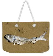 Decomposing Dead Fish Carcass Washed Ashore Weekender Tote Bag