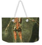 Deep Muscular System Of The Back Weekender Tote Bag