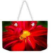 Deep Red Dahlia With Yellow Center Weekender Tote Bag
