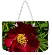 Deep Red Peony With Bright Yellow Stamens  Weekender Tote Bag