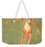 Deeper Muscular System Of The Front Weekender Tote Bag
