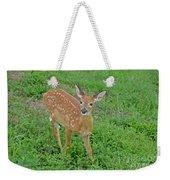 Deer 11 Weekender Tote Bag