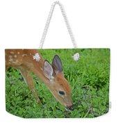 Deer 12 Weekender Tote Bag