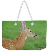 Deer 14 Weekender Tote Bag