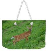 Deer 6 Weekender Tote Bag