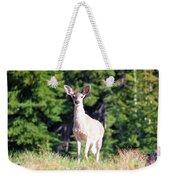 Deer Approaching Weekender Tote Bag