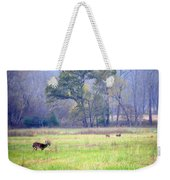 Deer At Cades Cove Weekender Tote Bag