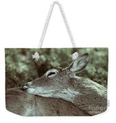 Deer Close-up Weekender Tote Bag