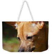Deer-head Chihuahua Weekender Tote Bag
