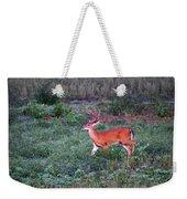 Deer-img-0113-001 Weekender Tote Bag
