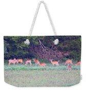 Deer-img-0128-005 Weekender Tote Bag