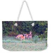 Deer-img-0156-002 Weekender Tote Bag