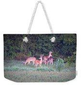 Deer-img-0158-001 Weekender Tote Bag