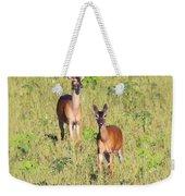 Deer-img-0283-001 Weekender Tote Bag