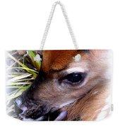 Deer-img-0349-002 Weekender Tote Bag