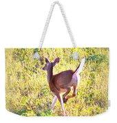 Deer-img-0456-001 Weekender Tote Bag