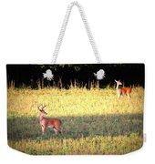 Deer-img-0627-001 Weekender Tote Bag