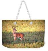 Deer-img-0627-002 Weekender Tote Bag