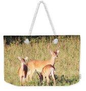 Deer-img-0642-001 Weekender Tote Bag