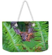 Fawn In The Ferns Weekender Tote Bag