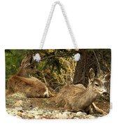 Deer In The Rockies Weekender Tote Bag