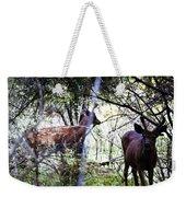 Deer Looking For Food Weekender Tote Bag