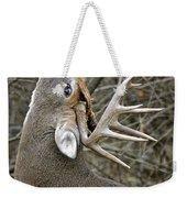 Deer Pictures 444 Weekender Tote Bag