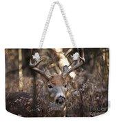 Deer Pictures 449 Weekender Tote Bag